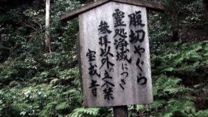 """39.【霊処浄域】!!-""""腹切りやぐら""""への行き方!!-Approach to【Attention reading】""""hara-kiri"""" ( stomach cutting )tower's Access!!"""