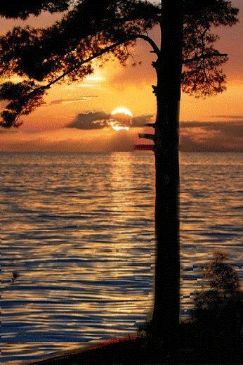 14.朝日のあたる道No.13を演ったインプレ_Road where morning sun is hit【as_time_goes_by】Explanation of No.13th_impress